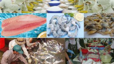 水産物製造・販売・委託加工のベトナムからの輸入、買付け、仕入れはベトナムジャパンまで
