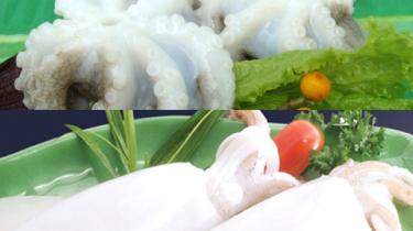 魚介類の製造・販売のベトナムからの輸入、買付け、仕入れはベトナムジャパンまで