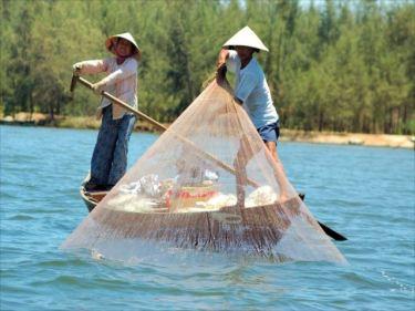 エビ・水産加工品のベトナムからの輸入、買付け、仕入れはベトナム仕入れ.com まで