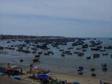 水産物のベトナムからの輸入、買付け、仕入れはベトナム仕入れ.com まで