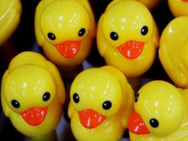プラスチックおもちゃなどのベトナムからの輸入、買付け、仕入れはベトナム仕入れ.com まで