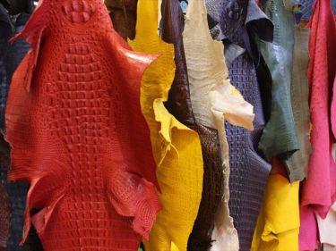 ワニ革製品(財布、靴、ベルト、バッグ)などのベトナムからの輸入、買付け、仕入れはベトナム仕入れ.com まで
